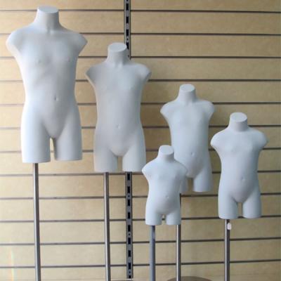 Bustos y torsos