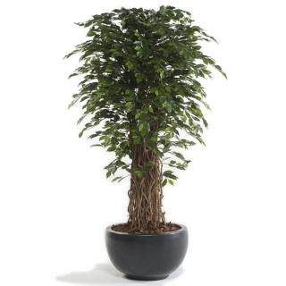 Árbol Ficus DELUXE, artificial de 180 cm, para interior