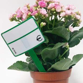 Etiqueta floristería, 20 unidades, reutilizable