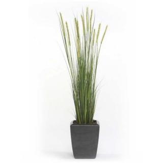 Planta Junco Espiga Estrecha,  artificial altura155 cm, para interior
